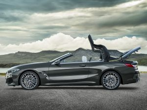 Appreciate Nature Better In The BMW 8 Series Convertible