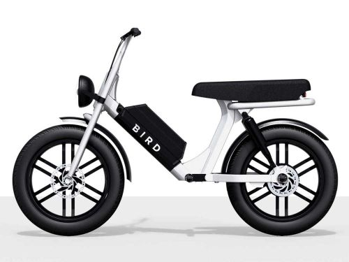 Bird Cruiser-A New Urban Micro-Mobility Solution