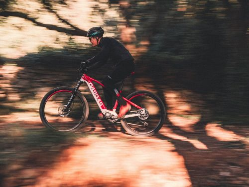 2021 GasGas Cross Country and Dual Cross E-Bicycle Preview