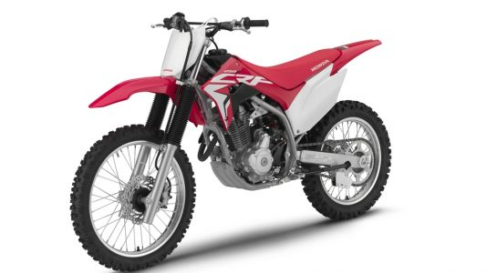 2019 Honda CRF110F, CRF125F, CRF250F Trail First Look
