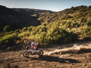 Motorsport Roundup India At The Andalucia Rally And F1 Plus MotoGP Updates