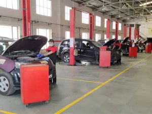 Mahindra Announces Contactless Service Experience With App As Dealerships Open In Certain Areas